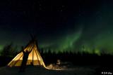 Northern Lights  46
