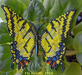 Tiger Swallowtail Butterfly - sold