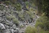 Hike to Desolation Wilderness