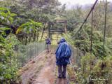 Journée d'observation sous la pluie