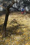 Conchas Park