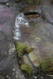 La Macarena, Caño Escondido