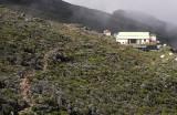 Piton des Neiges Refuge, Reunion Island