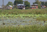 Inle Lake, Inle Treasure