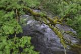 River near Hermitage Castle