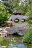 Chinese Garden 1