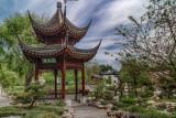 Chinese Garden 3