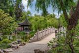 Chinese Garden 5