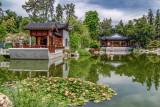 Chinese Garden 8