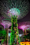 SINGAPORE (Revisited)