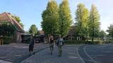 02_dak-wandeling.jpg