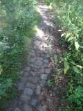 15_dak-wandeling.jpg