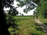 24_dak-wandeling.jpg