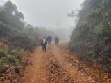 Birding Montezuma Road