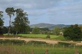 Broomhill lane