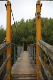 Elba bridge