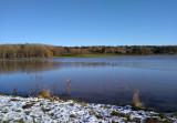 Hetton Lyons pond