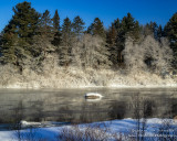 Frost along the banks of the Chippewa River