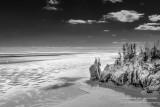 Winter landscape at the Sea Stack, black & white