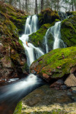 Small waterfall and moss covered rocks