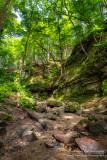 Parfrey's Glen, gorge 1