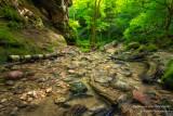 Parfrey's Glen, gorge 6