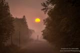 Foggy morning sunrise