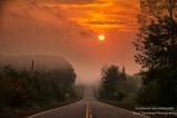 Orange sunrise, foggy morning