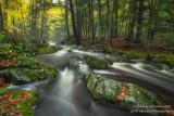 Magical Creek, early fall