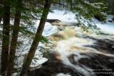Along the Tyler Fork river