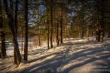 Snowy path along the Flambeau river