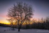 Colors of dawn