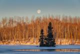 Setting full moon at sunrise