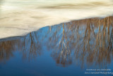 Transition - ice, water, reflections 1