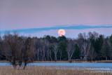 April full moon rising