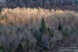 View from Juniper Rock overlook 7