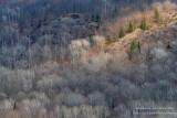 View from Juniper Rock overlook 8