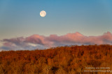 Setting Full Moon in May