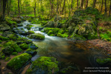 Creek in the Blue Hills, Wisconsin