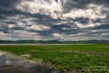 Trempealeau National Wildlife Refuge - lots of lily pads