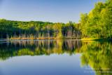 Summer reflections, Perch Lake