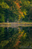 Early fall colors at Perch Lake 1