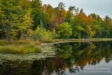 Early fall colors at Perch Lake 3