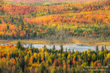 Fall colors in the north country