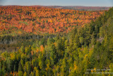Fall colors in the north country 2