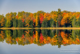Perfect autumn reflections