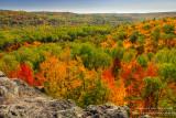 Brilliant fall colors - Juniper Rock 2