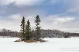 Fresh snow at Audie Lake 1