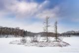 Fresh snow at Audie Lake 2