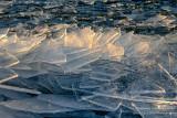 Clear Ice shards, Lake Superior 1